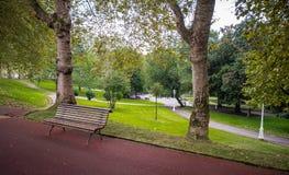 绿色树在公园,毕尔巴鄂 免版税图库摄影