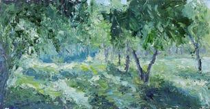 绿色树在庭院里 库存照片