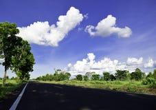 绿色树,白色云彩,蓝天,靛蓝天空路 免版税库存照片