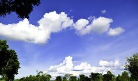 绿色树,白色云彩,蓝天,靛蓝靛蓝 图库摄影