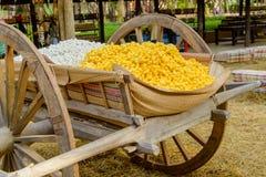 黄色桑蚕茧壳通过丝绸之路 免版税图库摄影