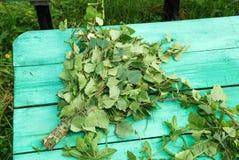 绿色桦树笤帚 库存图片