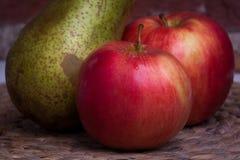绿色梨和红色苹果在背景墙壁上 免版税库存照片
