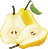 黄色梨的图片 免版税库存图片