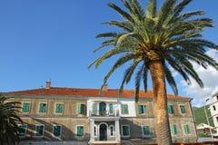 绿色棕榈和旅馆在蓝天 库存图片