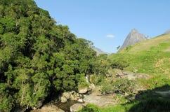绿色森林、河和光滑的岩石美好的风景  免版税库存照片