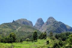 绿色森林和光滑的岩石美好的风景  免版税库存图片