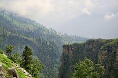 绿色森林和岩石山沟在山 免版税库存照片