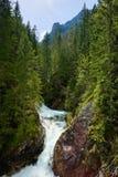 绿色森林瀑布小河水Tatra山喀尔巴汗 免版税库存图片