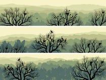 绿色森林水平的横幅有巢的在树。 免版税图库摄影