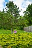 紫色椅子在公园-使或采取休息变冷 免版税库存图片