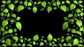 绿色植物样式在黑色增长 向量例证
