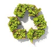绿色植物以回收标志的形式 皇族释放例证