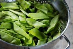 绿色椰树豆 免版税库存图片