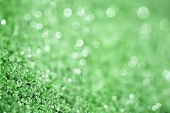 绿色模糊的背景 库存照片