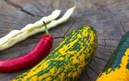 绿色橙色白豆夏南瓜、荚和红色辣椒 库存图片