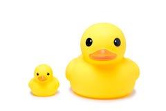 黄色橡胶鸭子玩具在孤立白色背景中 图库摄影