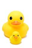 黄色橡胶鸭子玩具在孤立白色背景中 免版税库存照片