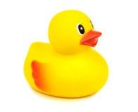 黄色橡胶鸭子 库存照片