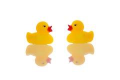 黄色橡胶鸭子 免版税图库摄影