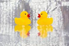黄色橡胶鸭子 免版税库存图片