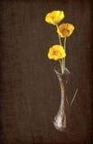 黄色毛茛花和花瓶 免版税库存图片