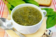 绿色汤在织品的与匙子 免版税图库摄影