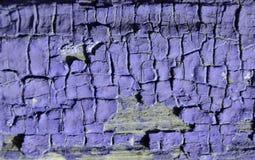 紫色油漆纹理  免版税库存图片
