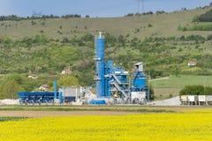 黄色油菜籽领域在保加利亚 库存图片