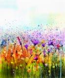 绘紫色波斯菊花、矢车菊,紫罗兰色淡紫色,白色和橙色野花的抽象水彩 库存照片