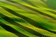 绿色波浪小山在南摩拉维亚 免版税库存图片