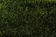 绿色波浪抽象纹理 免版税库存图片