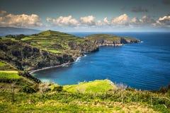 绿色海岛在大西洋,圣地米格尔,亚速尔群岛,葡萄牙 免版税库存图片