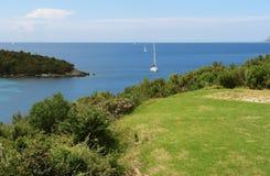 绿色海岸和游艇 免版税库存图片