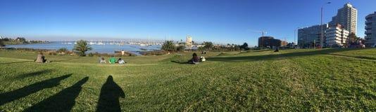 绿色海岸在城市 免版税图库摄影