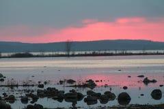 紫色海湾 库存图片