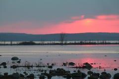 紫色海湾 免版税库存照片