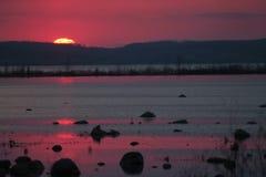 紫色海湾 图库摄影