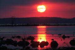紫色海湾 免版税图库摄影