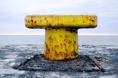 黄色海洋制帽工人 库存图片