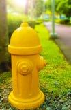 黄色消防龙头 库存图片