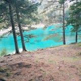 绿色湖奥地利 库存图片