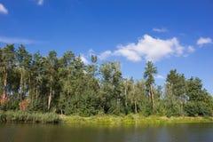 绿色湖岸 免版税库存图片