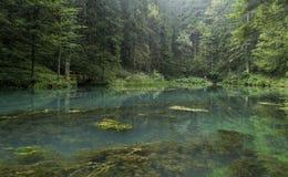绿色湖,戈尔斯基科塔尔,克罗地亚 免版税库存图片