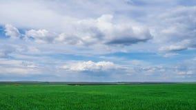绿色漂浮在绿色明亮的天空美好的风景, timelapse的领域和多云天空美丽的云彩传神 股票录像