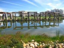 绿色点公园开普敦 免版税库存照片