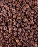 黑色烤咖啡豆 免版税库存照片