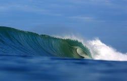 绿色热带冲浪的波浪 库存照片