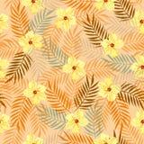 黄色牙买加花01 免版税库存照片