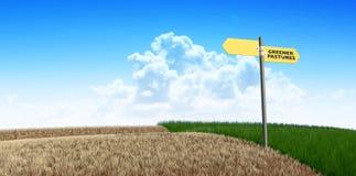 绿色牧场地标志 库存图片